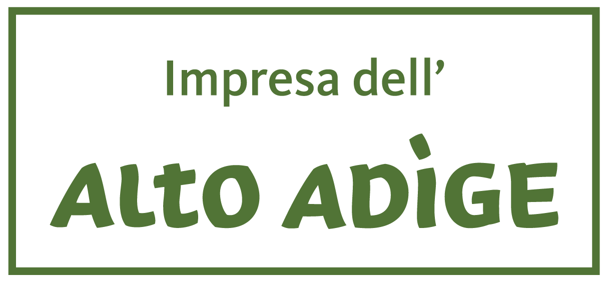 logo altoadige impresa it