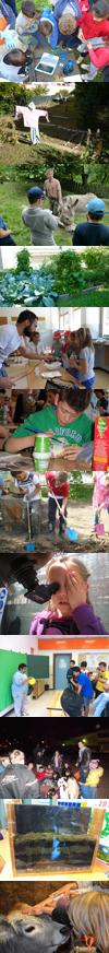 immagini bambini al lavoro educazione ambientale